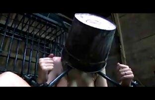 فيرونيكا راين ، الانا ايفانز Ahryan أفلام أجنبيه جنسيه Astyn سخيف مع الحبيب في غرفة الطعام
